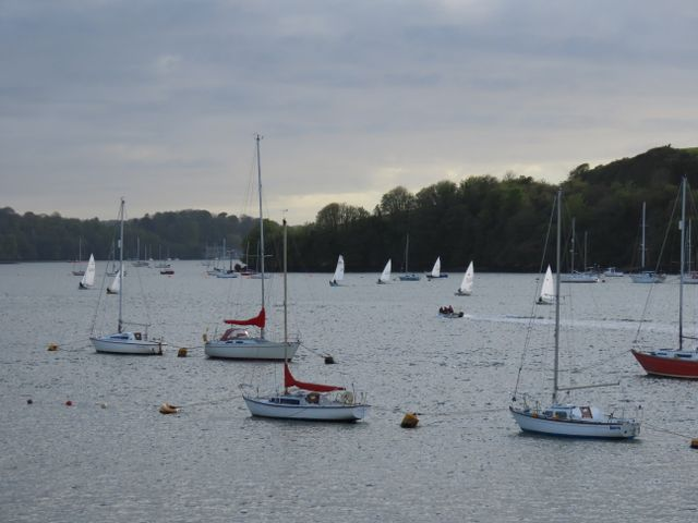 Dinghy racing 240419